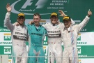 Photo: Formel 1, 2014, Interlagos, Podium, Hamilton